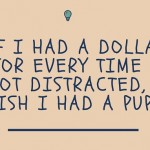 dollar for distractions